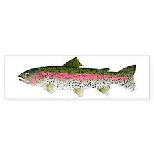 Rainbow Trout - Stream Bumper Bumper Sticker