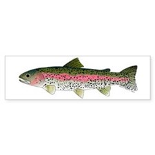 Rainbow Trout - Stream Bumper Bumper Sticker