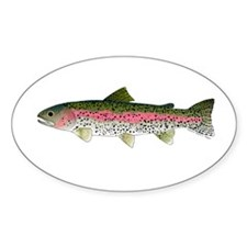 Rainbow Trout - Stream Decal