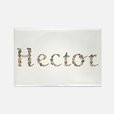 Hector Seashells Rectangle Magnet
