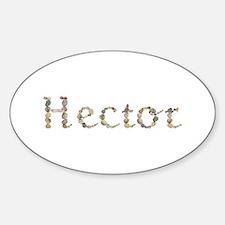 Hector Seashells Oval Decal