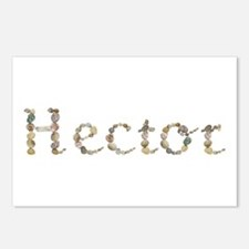 Hector Seashells Postcards 8 Pack