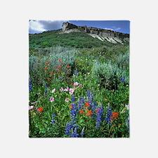 Wildflowers, Beautiful Colorado Throw Blanket