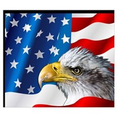 Bald Eagle On American Flag Canvas Art