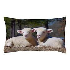 Horned Dorset Sheep Lambs Pillow Case