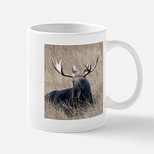 Shiras Moose Mug