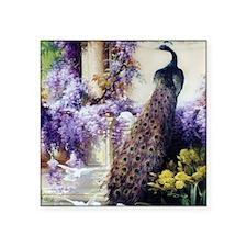 Bidau Peacock, Doves, Wisteria Sticker