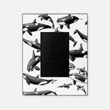 Orca Picture Frame