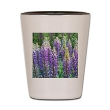 Maine Lupines Shot Glass