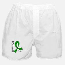 TBI Survivor 12 Boxer Shorts