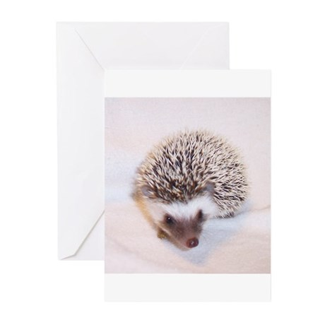 Prima the Hedgehog Greeting Cards (Pk of 10)