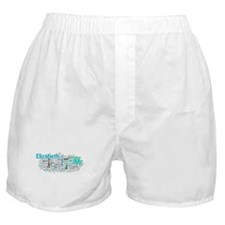 Pride and Prejudice Word Art Boxer Shorts