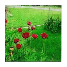 Red Poppies in Full Bloom Tile Coaster