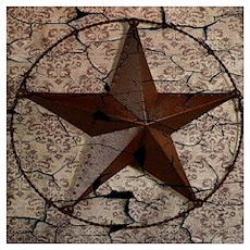 rustic texas lone star Poster