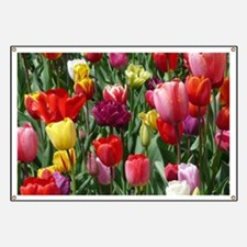 Tulip_2015_0207 Banner