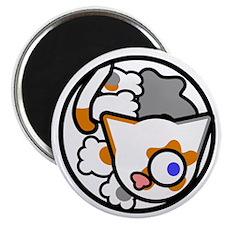 Fluffballs Cat Magnet