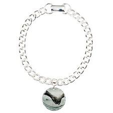 Dazzle Charm Bracelet, One Charm