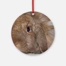 Morris the Happy Bunny Round Ornament