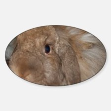 Morris the Happy Bunny Decal