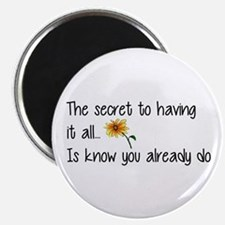The Secret to having it all... Magnets