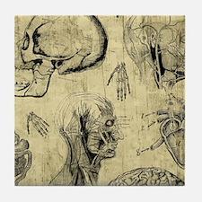 Vintage Human Anatomy Tile Coaster