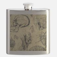 Vintage Human Anatomy Flask
