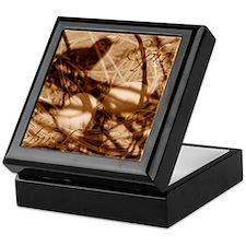 Cute Earthtones Keepsake Box