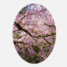 Raining Cherry Oval Ornament