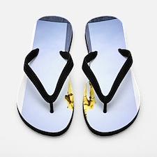 Oregon Pioneer Flip Flops