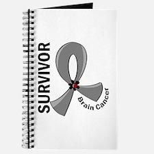 Brain Cancer Survivor 12 Journal