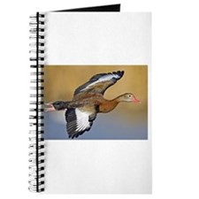 Black-Bellied Whistling Duck Journal