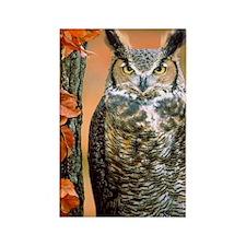 Cute Owl photo Rectangle Magnet