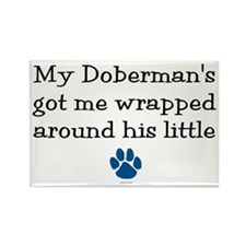 Wrapped Around His Paw (Doberman) Rectangle Magnet