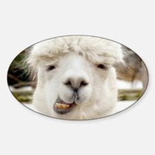 Funny Alpaca Smile Decal