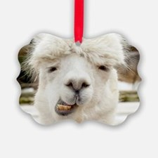 Funny Alpaca Smile Ornament