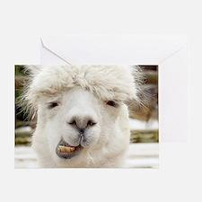 Funny Alpaca Smile Greeting Card