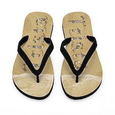 Trista Seashells Flip Flops