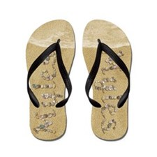 Myles Seashells Flip Flops