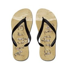 Myra Seashells Flip Flops