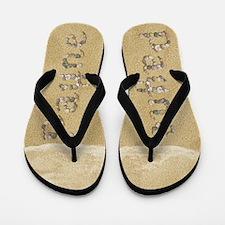 Payne Seashells Flip Flops
