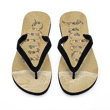Julio Seashells Flip Flops