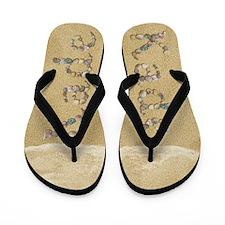 Kade Seashells Flip Flops