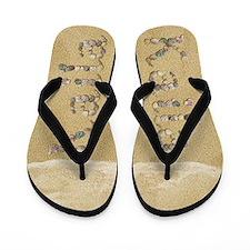 Kaila Seashells Flip Flops