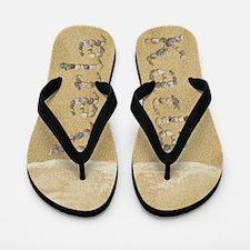 Karla Seashells Flip Flops