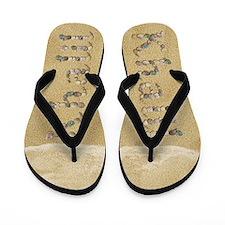 Khalil Seashells Flip Flops