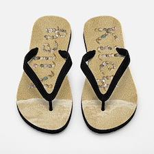 Kiley Seashells Flip Flops