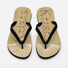 Krista Seashells Flip Flops