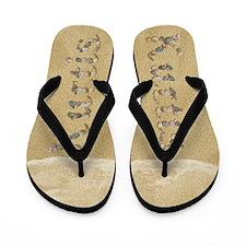 Kurtis Seashells Flip Flops