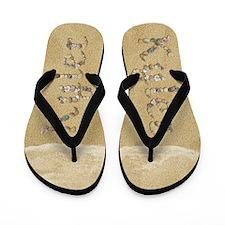 Kyler Seashells Flip Flops
