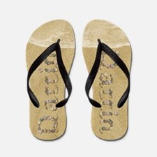 Darrin Seashells Flip Flops